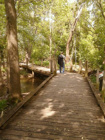 Wildwood Park: Peaceful boardwalk trails refresh one's soul in the most glorious ways! You'll be hooked like me