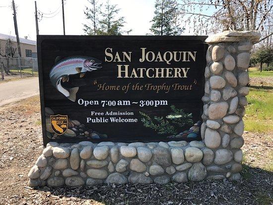 San Joaquin Hatchery