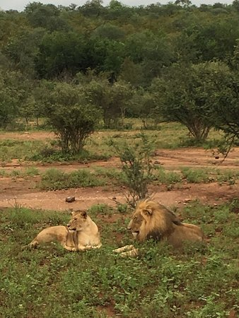 Garonga Safari Camp: photo9.jpg