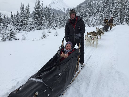 写真Snowy Owl Sled Dog Tours枚