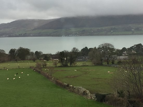 Rostrevor, UK: View from porch of Seaview Guesthouse