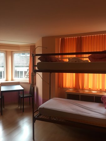 Hotel Otter Image