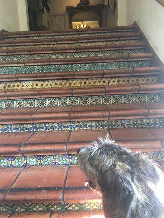 Cypress Inn: photo1.jpg