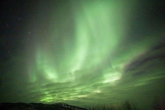 Aurora Borealis & Northern Lights Tours Yukon: photo4.jpg