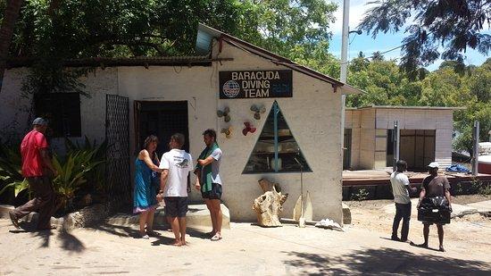Baracuda Diving: HQ Marina