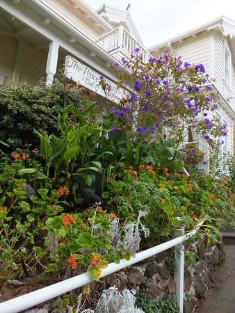 Devonport, New Zealand: View of front of B&B