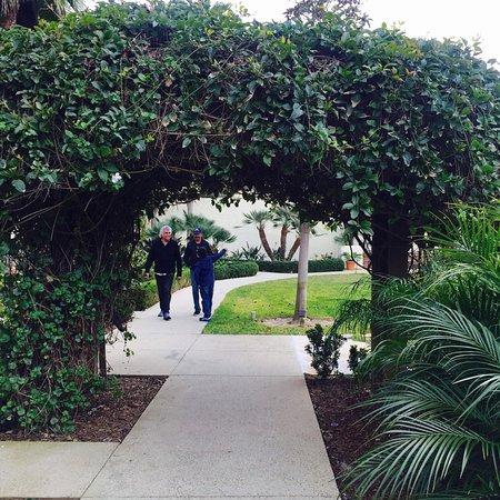 Estancia La Jolla Hotel & Spa: Area walk ....