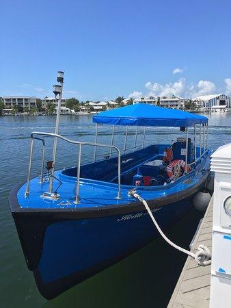 Harbor View Tours