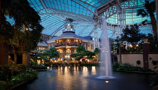 Foto de gaylord opryland resort convention center nashville rejuvenate in our cascades for Gaylord opryland hotel swimming pool