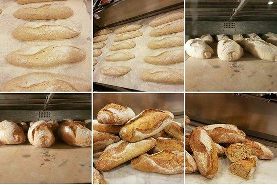 Montespertoli, Italia: il nostro pane