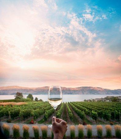 Kelowna, Canada: Wine and a Lake View at Quail's Gate Winery