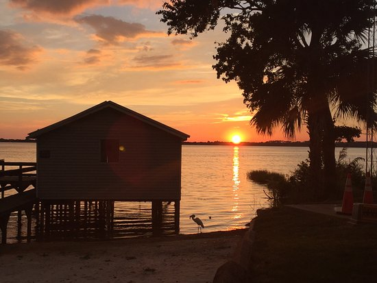 Another great Sunset view by lake Dora eastern side...