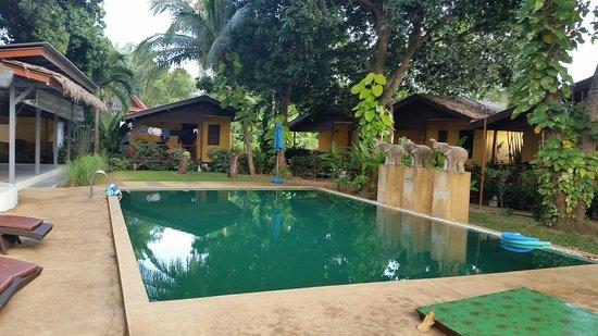New Leaf Detox Resort: a noce pool to cool off