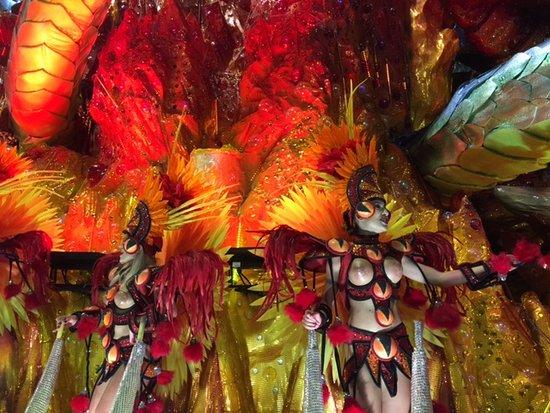 themes of all types picture of rio de janeiro carnival rio de