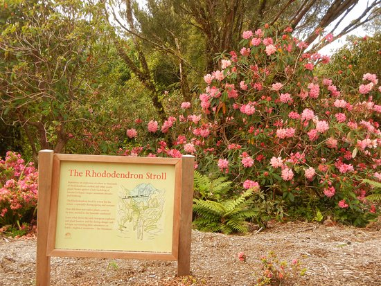 New Plymouth, New Zealand: Well marked trails