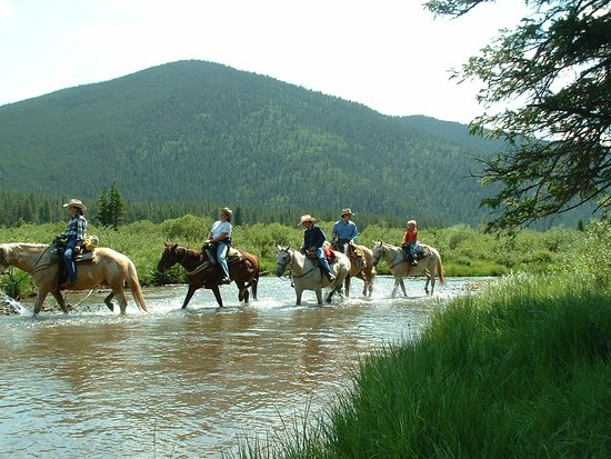 Grant, CO: Beautiful trail rides