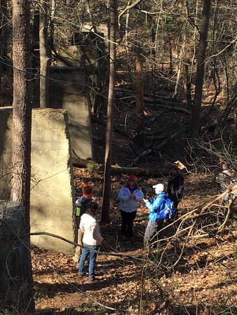 Millville, NJ: Great hiking trails in Maurice River Bluffs