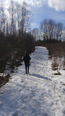 Cortland, NY: February