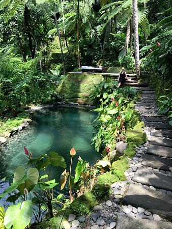 COMO Shambhala Estate: Rain-Forest picnic