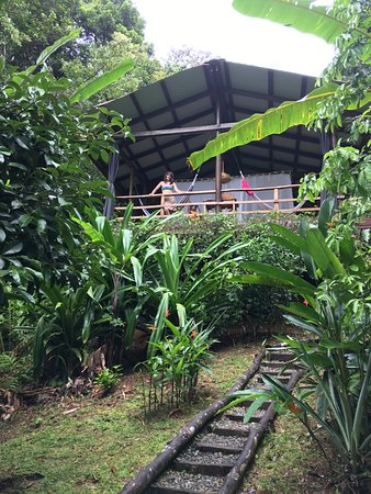 La Loma Jungle Lodge and Chocolate Farm: Cabina #3--all the way at the top
