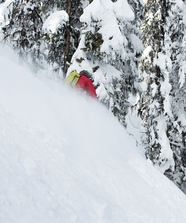 Big Red Cats : Steep and deep!