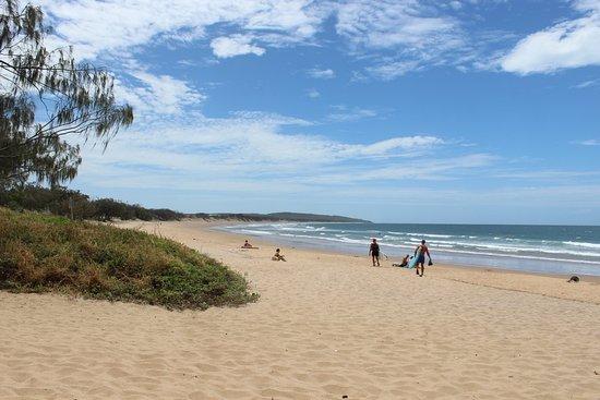 Beach - Picture of Mango Tree Motel, Agnes Water - Tripadvisor