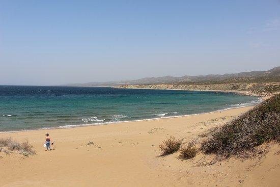 Paphos Bölgesi, Kıbrıs: Lara Beach