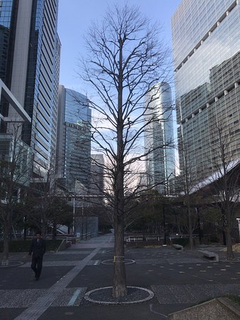 Shiono Park