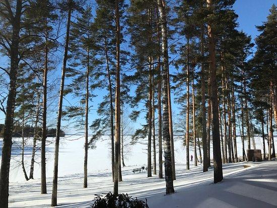Petays Resort: Wonderful holiday at Petäys Resort