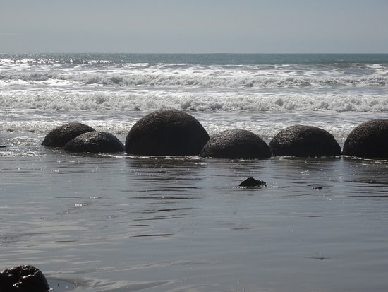 Moeraki, Nueva Zelanda: Some of the boulders at the edge of the sea.