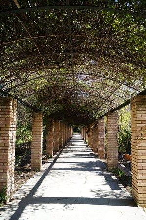 National Gardens : Tunel