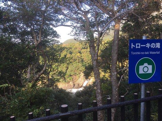 Toroki Falls : トローキの滝