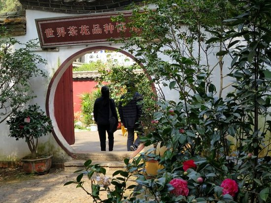 Jindian Park : traditional archetecture