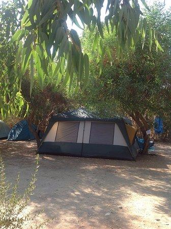 Kastanis Camping afbeelding