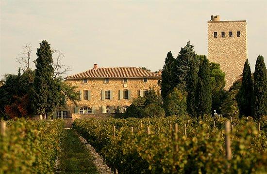 Chateau de la Gardine