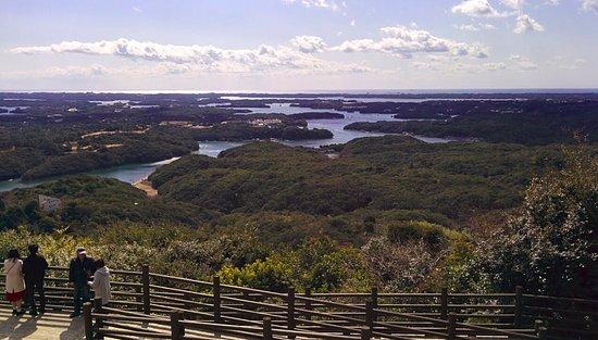 Yokoyama Observation Deck: 展望台の櫓に登ると更に良い眺め