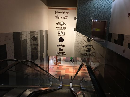 Walden Galleria Mall Looking Down