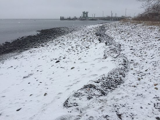 Lincolnville, ME: Seaweed,sand,the sea, & SNOW. The sun will come out tomorrow &it's not too soon to think about y