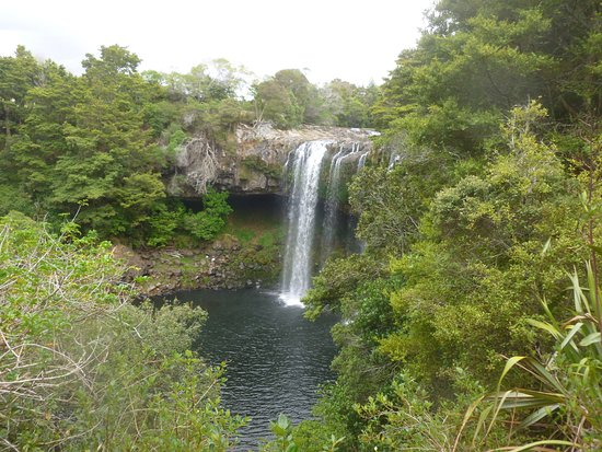 Kerikeri, New Zealand: Rainbow Falls