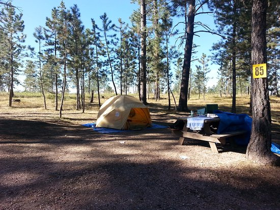 Big Pine Campground: Tent Site near back