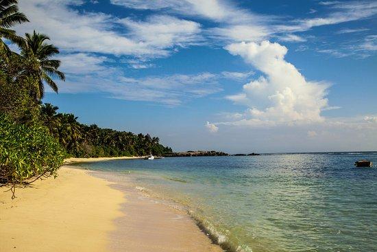 Chalets d'Anse Forbans: Der Strand