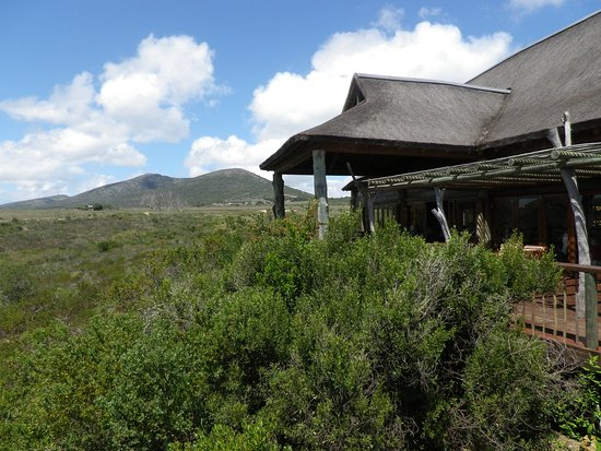 Garden Route Game Lodge: From the main area