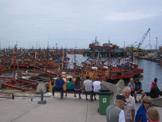 Puerto de Mar del Plata: Barcas pesqueras