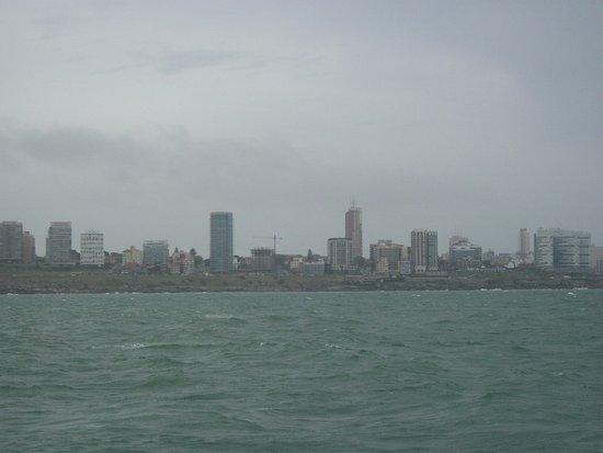 Puerto de Mar del Plata: Navegando por la costa de MDP, Se sale del puerto y hay varias empresas a elegir