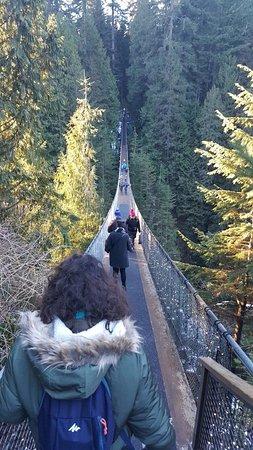 Vancouver Nord, Canada: Ponte Suspensa