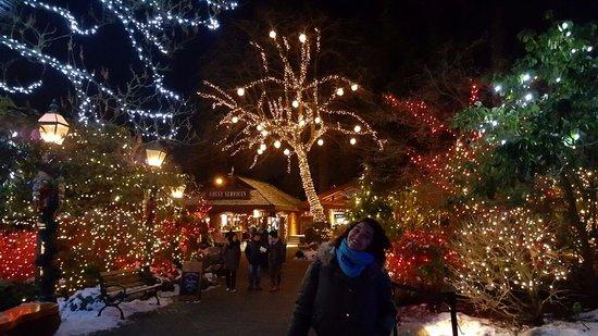 Vancouver Nord, Canada: Luzes de Natal