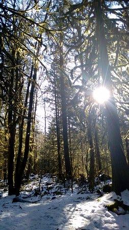North Vancouver, Canada: Lindo dia