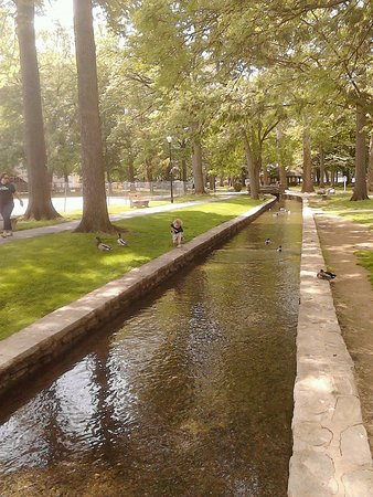 Lititz Springs Park: Perfect park to bring a bag of bread to feed the ducks!