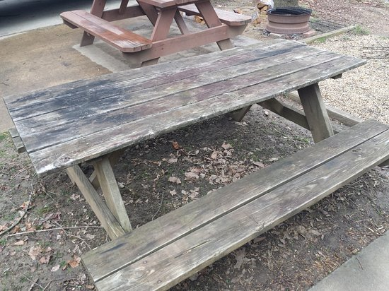 French Broad River Campground: Rotted Picnic Table
