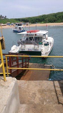Atlantis Divers: barco da Atlantis